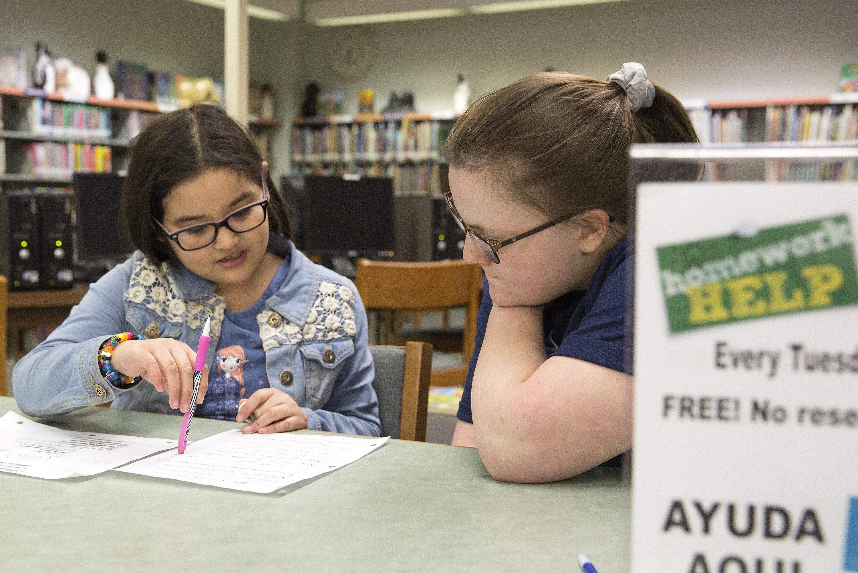 Homework help center dublin library